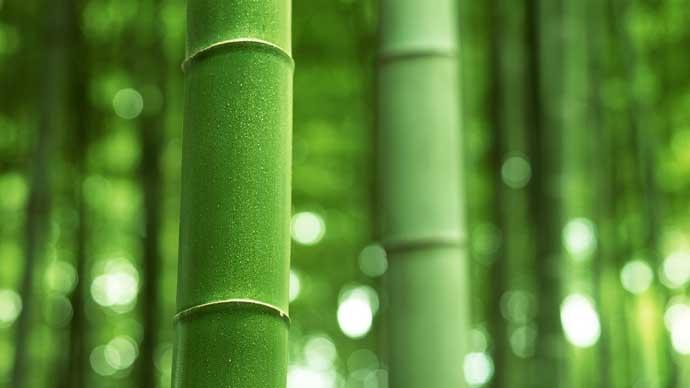 Как создают подушку из бамбука
